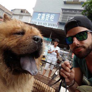 Corris Mitarbeiter Rettet Haustiere Vor Dem Kochtopf Corris